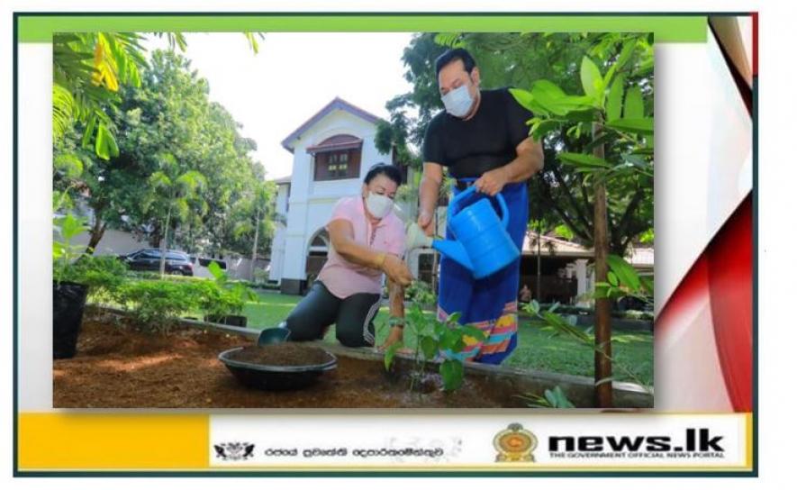 අනාගතයට ආදර්ශයක්.... Home Garden Challenge